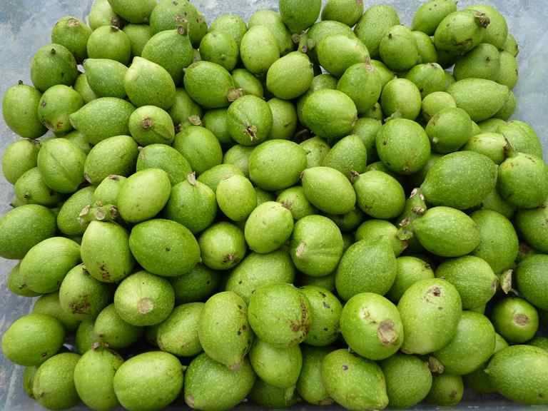Зеленые грецкие орехи: польза и вред - полезно вредно
