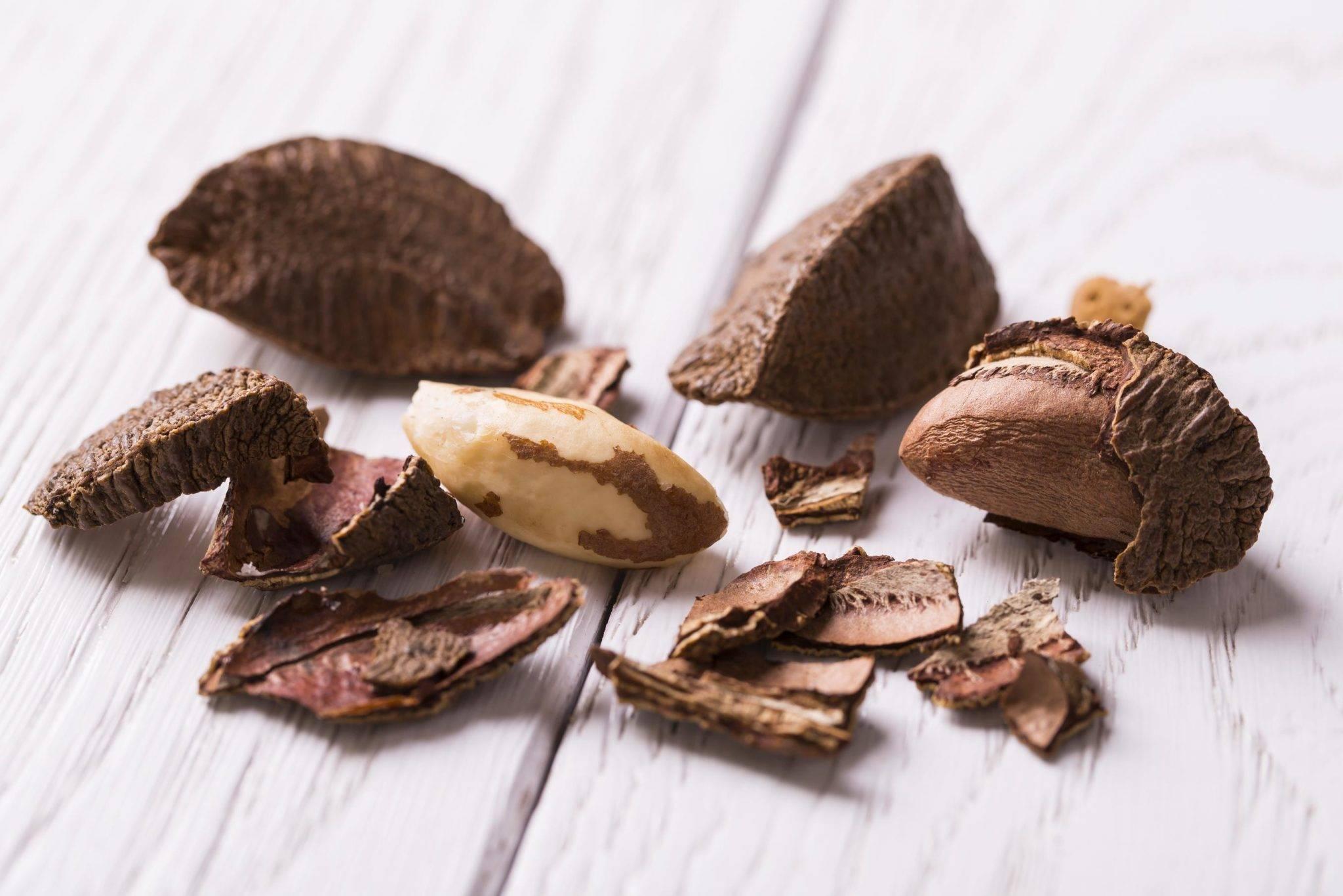 Состав и свойства бразильского ореха, польза и вред