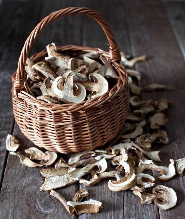 Как засушить грибы. как сушить грибы в домашних условиях   здоровье человека