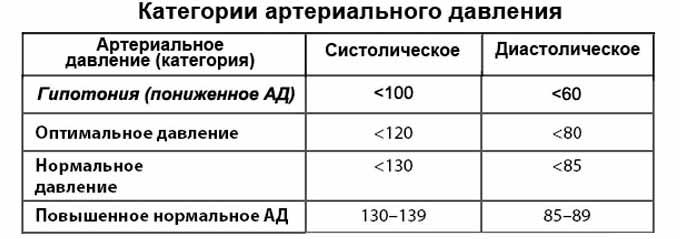 Как грецкие орехи влияют на давление: повышают или понижают, когда поднимают, может ли продукт применяться при артериальной гипертонии, сколько есть при высоком ад?