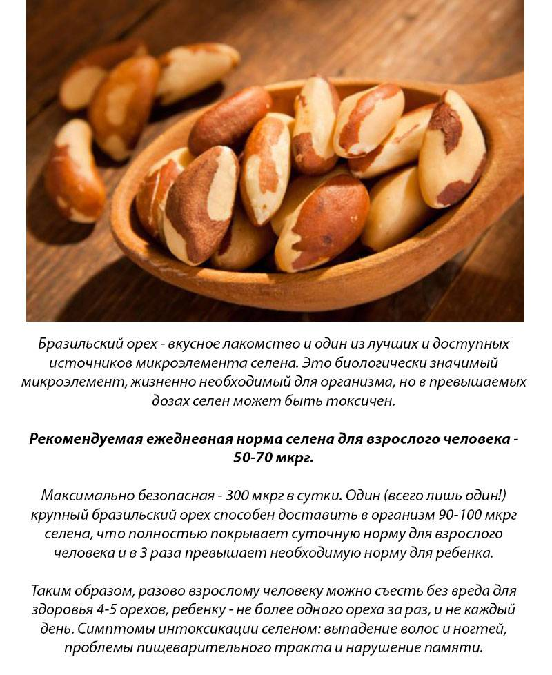 Бразильский орех — состав и свойства, польза и вред | здоровье и красота