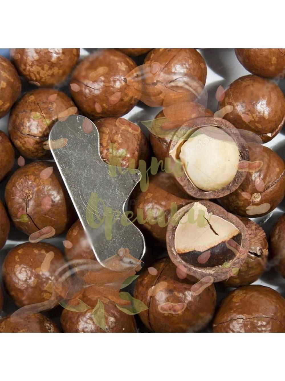 Немного проверенной на практике информации, для принятия решения о закладке орехового сада