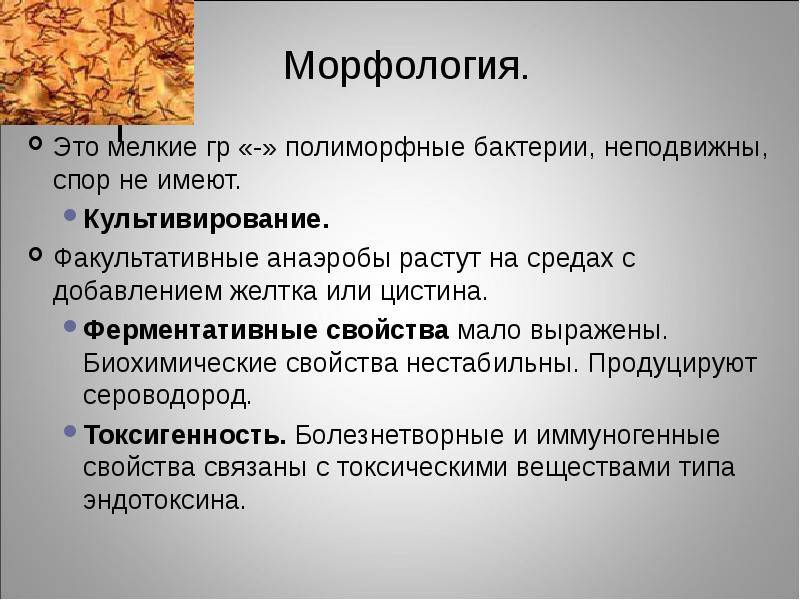 Лекция №1