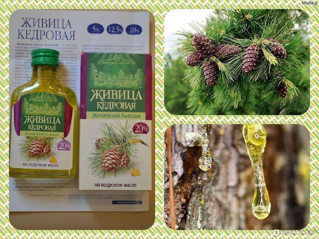 Как использовать масло кедровое для лица? — рецепты и отзывы