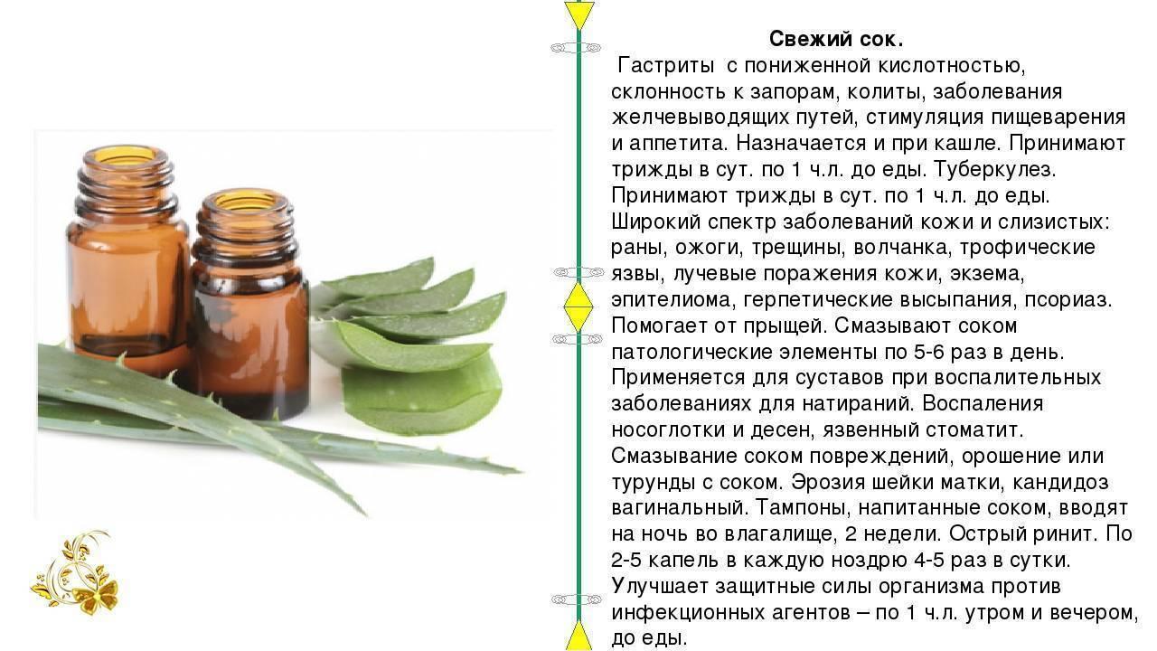 Эрозивный гастрит: лечение народными средствами в домашних условиях
