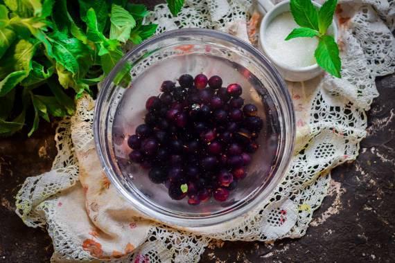 Уксус из листьев смородины от аллы ковальчук