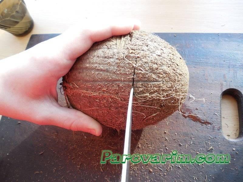 Что делать, если в доме появился кокос?