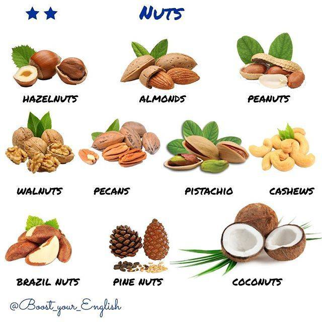 Съедобные орехи - виды с фото и названиями