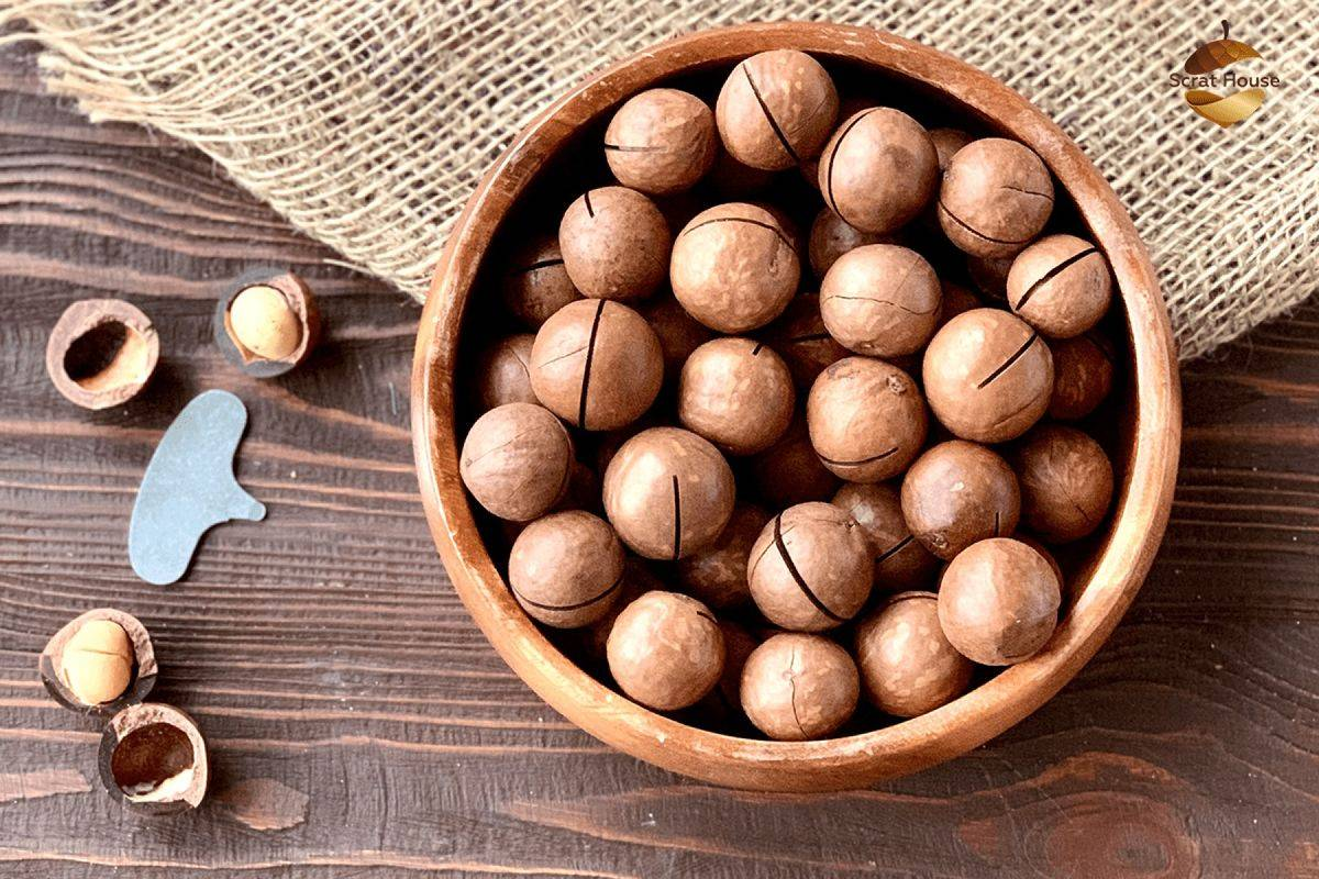 Макадамия — сладкий орех со вкусом шоколада