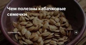Польза и вред кабачковых семечек
