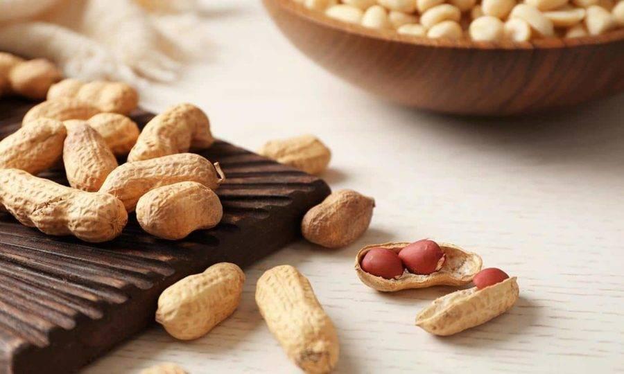 Орех фундук: польза и вред для организма, сколько нужно съесть