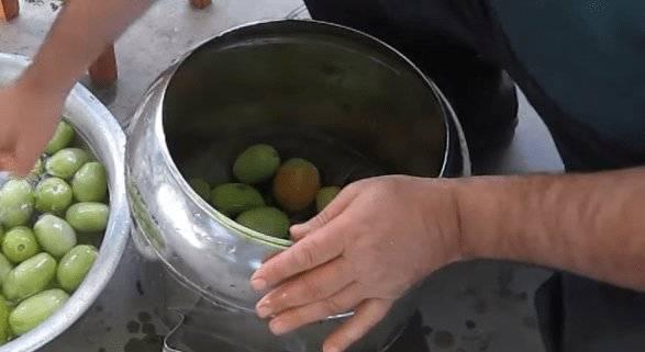 Как засолить зеленые помидоры в домашних условиях