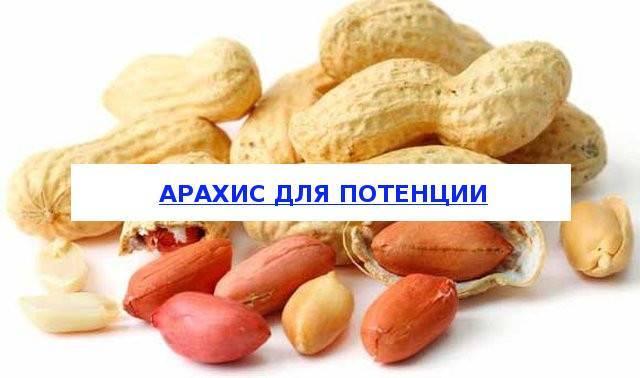 Арахис — польза и вред для нашего организма