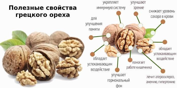 Грецкий орех для мужчин: польза и вред для организма, свойства, противопоказания для здоровья и сколько съедать в день (сутки) по норме, чем полезны перегородки?
