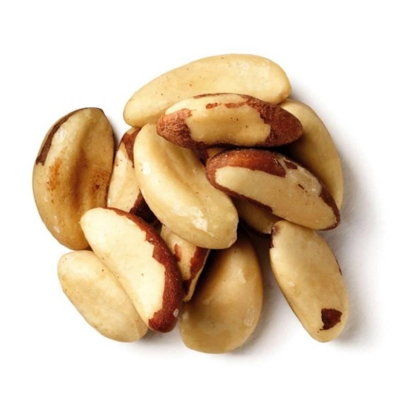 Бразильский орех: описание, свойства и применение