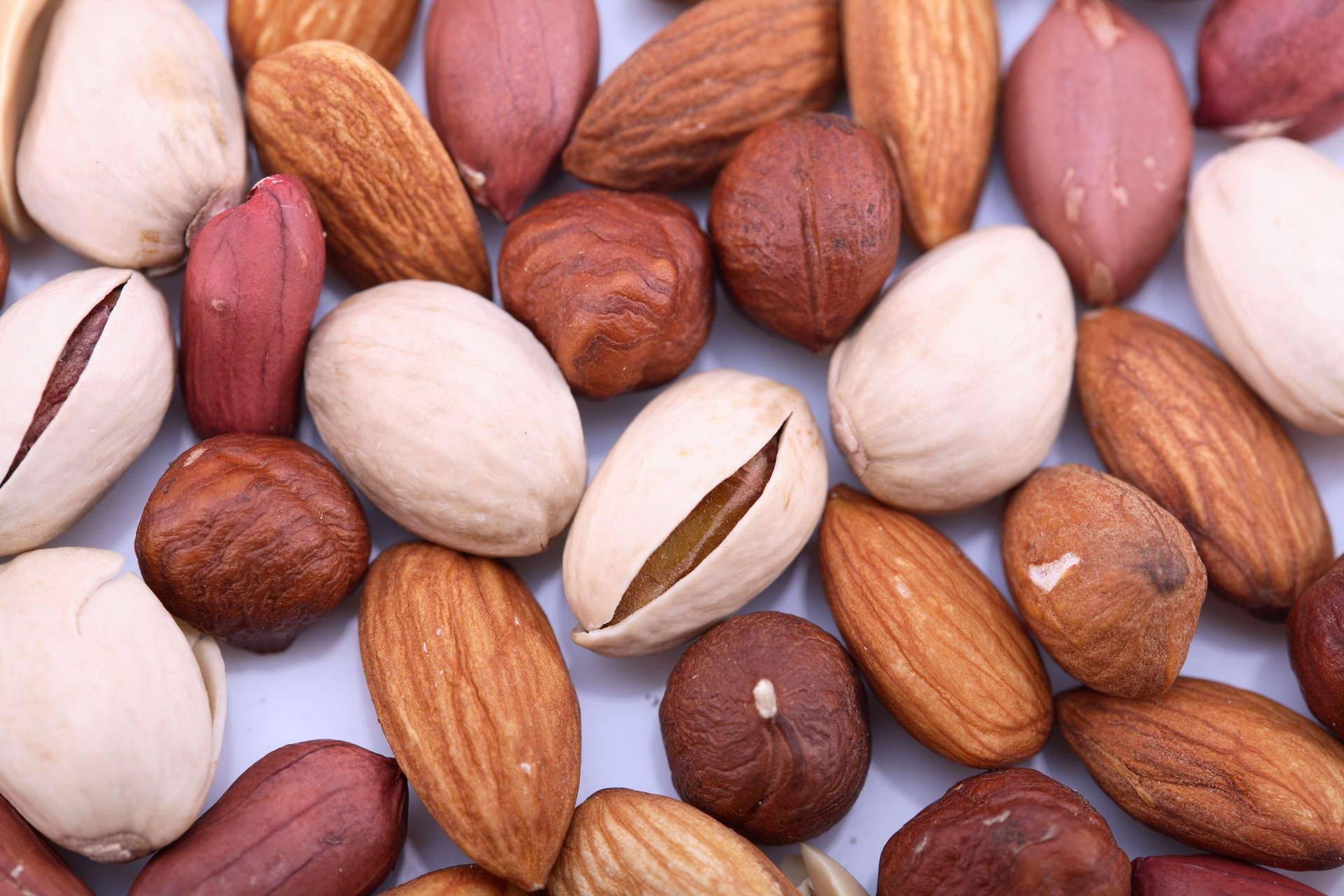 Что такое орех, к какому семейству относятся - орех эксперт