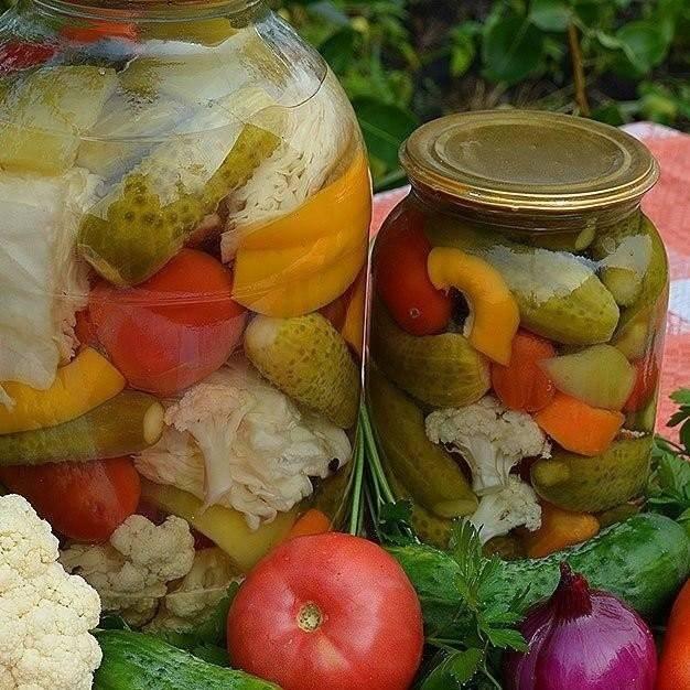 Сушка грибов, овощей, фруктов и ягод