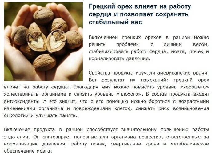 Полезно ли грецкий орех для геморроя