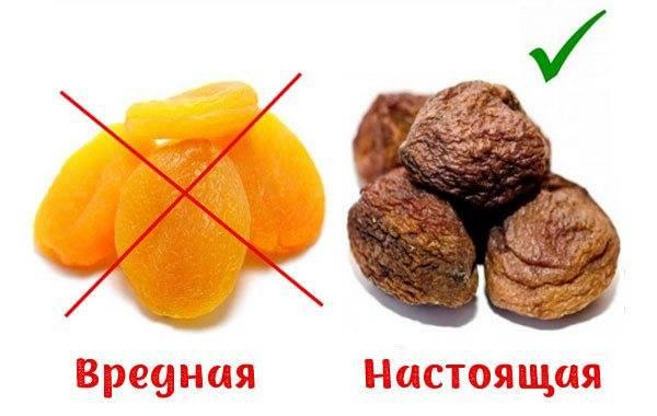 Польза и вред сушеных абрикосов