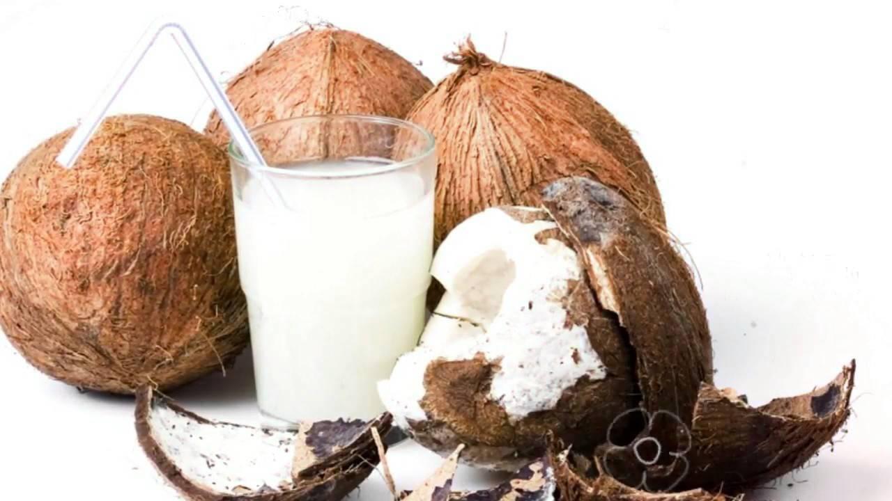 Мякоть кокоса: польза и вред, состав | пища это лекарство
