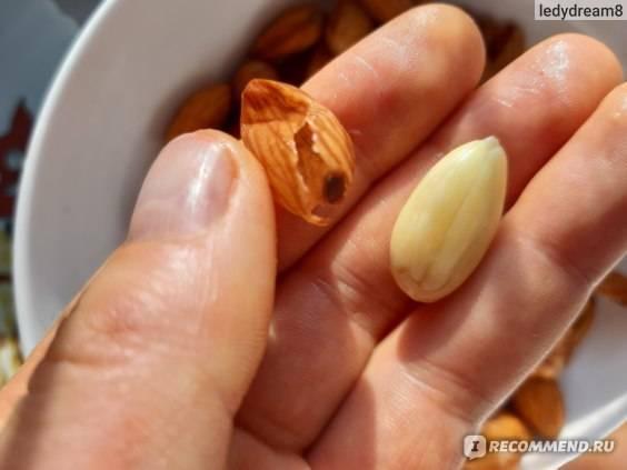 Нужно ли мыть орехи перед употреблением