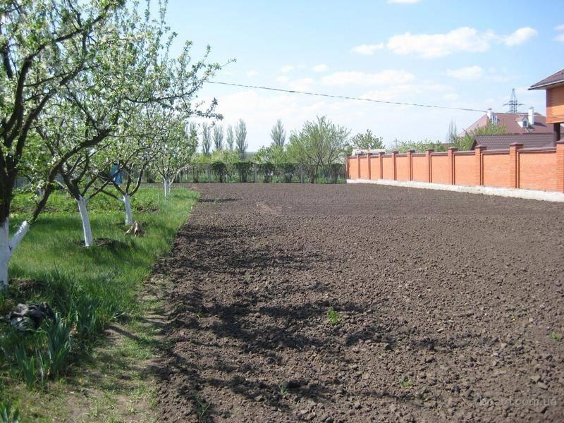 Полная инструкция по процедуре купли-продажи садового участка