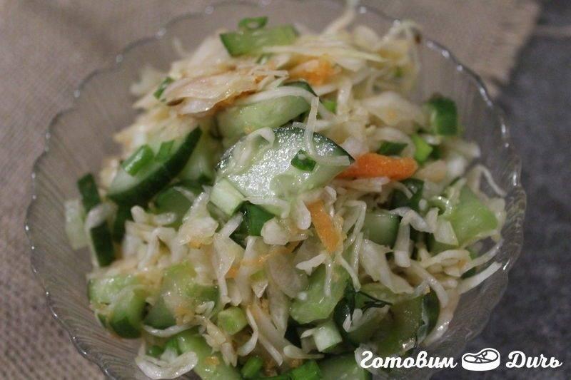 Салат из капусты с солеными огурцами. заготовки. легко и по правилам