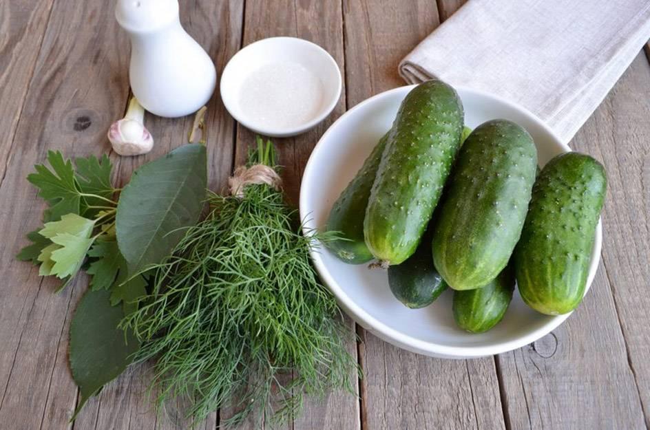 Квашеные огурцы на зиму в банках как бочковые: 7 рецептов огурцов холодным засолом (способом)