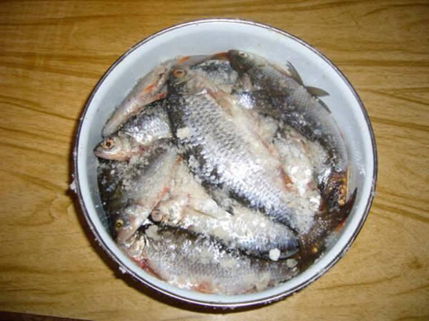 5 вкусных рецептов маринованной речной рыбы