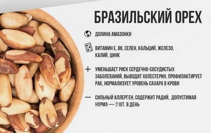 Бразильский орех — полезные свойства и противопоказания экзотического орешка | здорова и красива