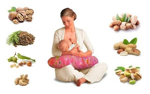Фундук при беременности: польза и вред, 1,2,3 триместры