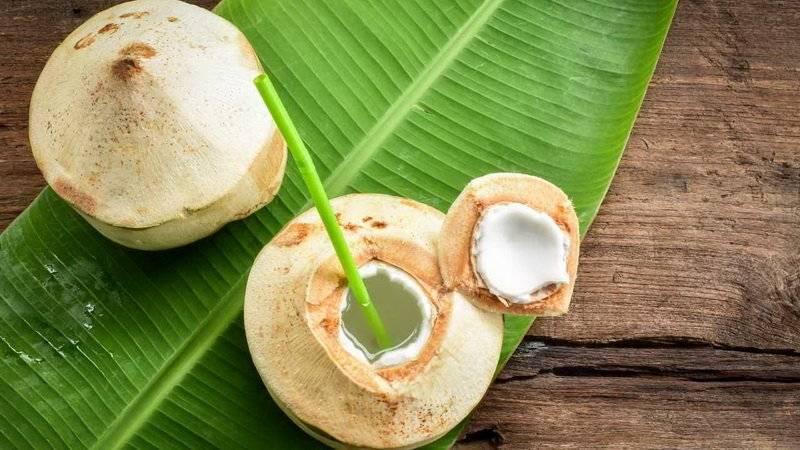 Съедобен ли зеленый кокос и чем отличается от коричневого? как открыть такой орех?