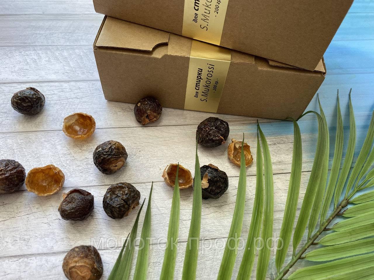 Мыльные орехи — и для волос, и для стирки, и для лечения