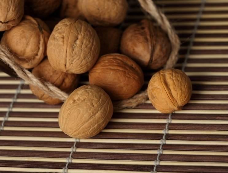 Чем полезны перегородки грецкого ореха и как их использовать