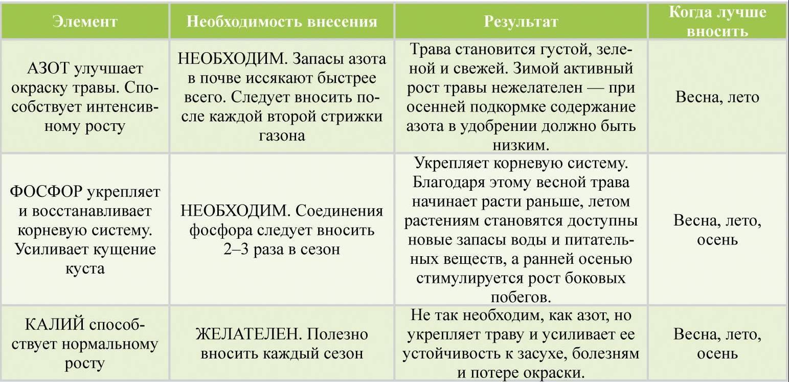 Описание, характеристика и правила выращивания сорта грецкого ореха кочерженко. в чем его польза и вред?