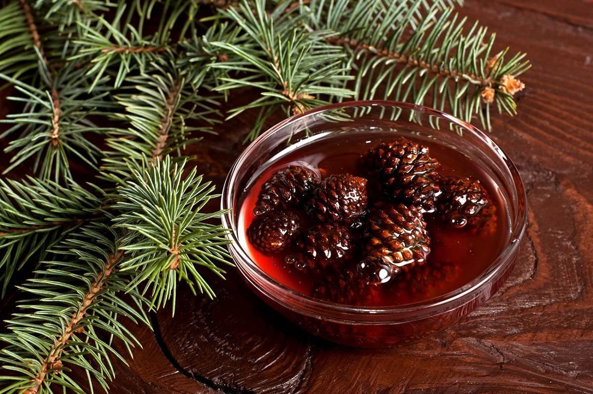 Варенье из кедровых шишек - польза и правильность приготовления