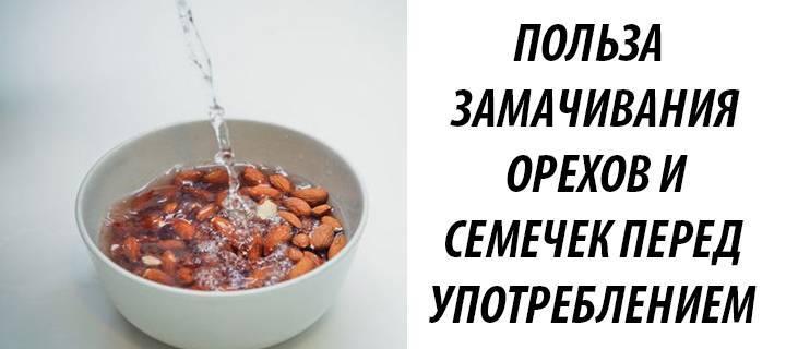 Фитиновая кислота: зачем замачивать крупы, орехи, бобовые
