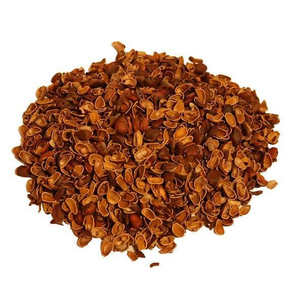 Кедровые орехи: настойка на водке, лечебные свойства кедровых шишек