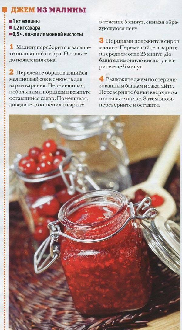 Варенье из киви на зиму: три лучших рецепта!