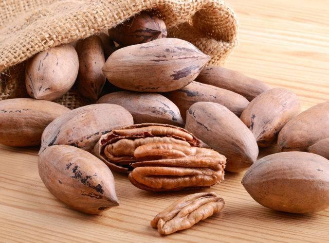 Пекан обыкновенный: фото и выращивание ореха