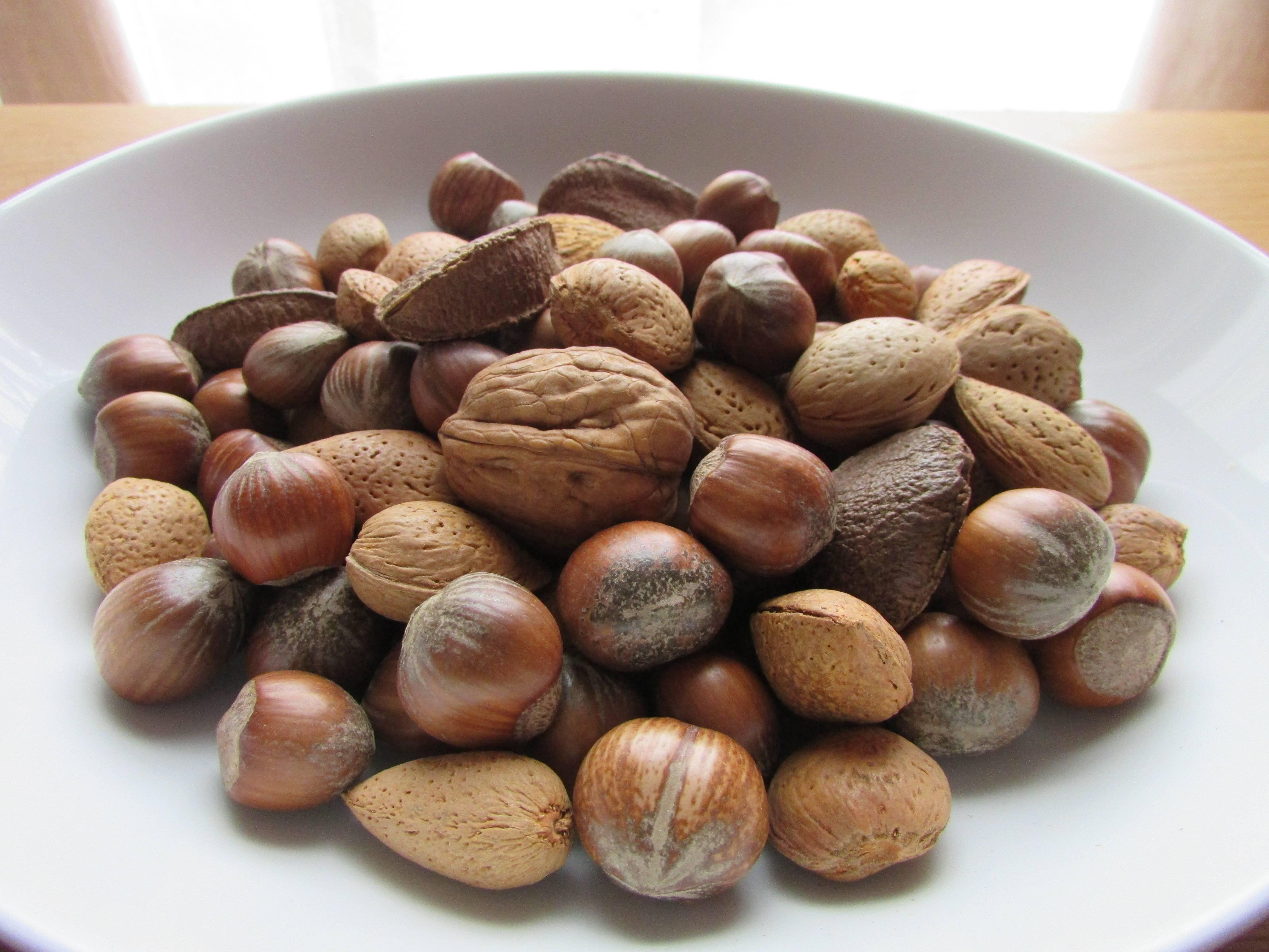 Сорта грецкого ореха и их описание