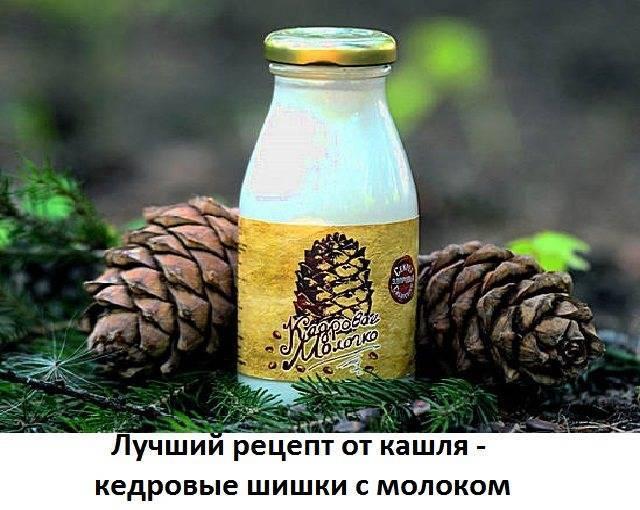 Грецкие орехи при кашле применение