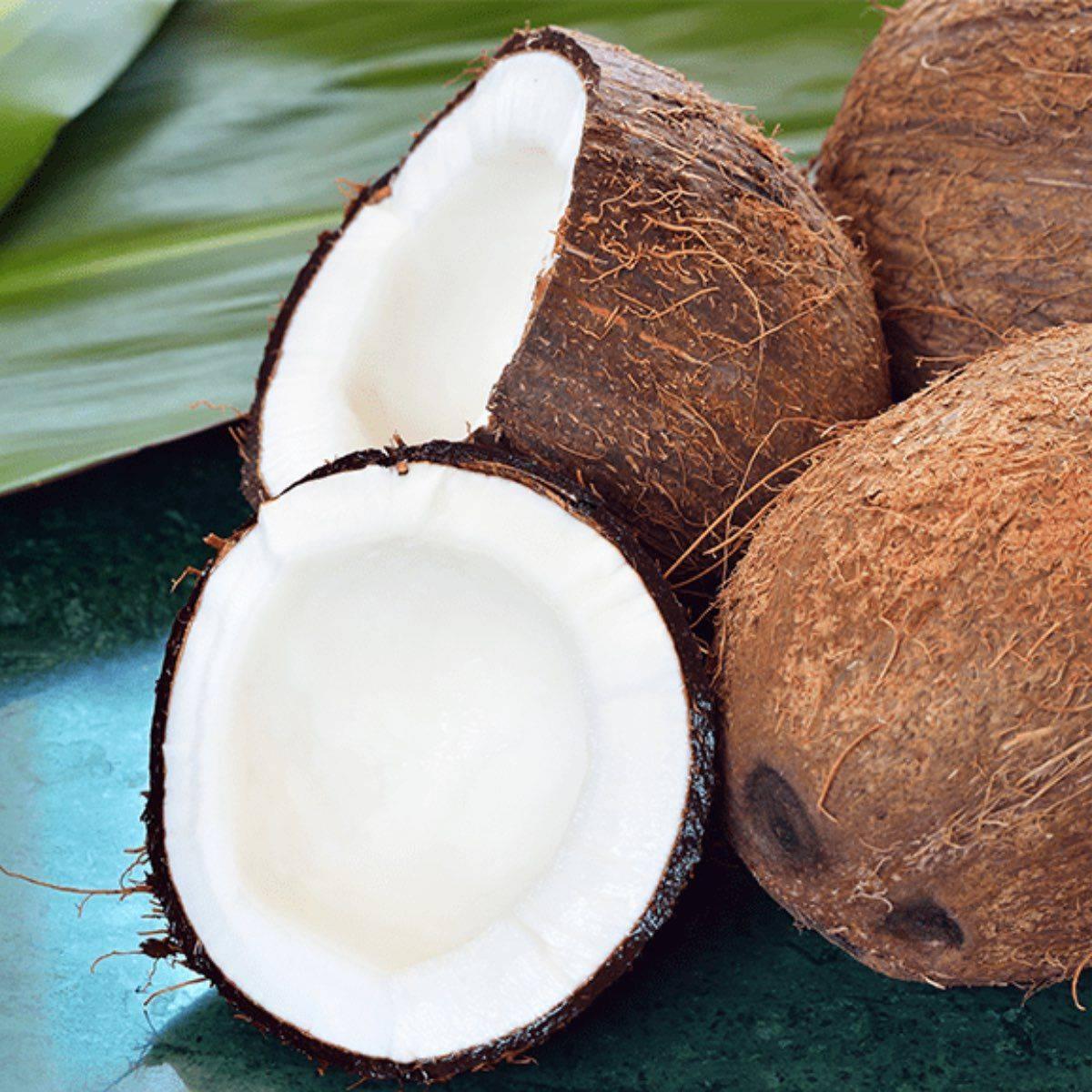 Сорта авокадо: черный «хасс» и зеленый - чем отличаются разные виды, к какому относятся «пинкертон» и красный