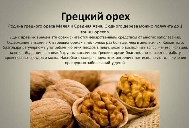 Грецкий орех: полезные свойства для организма и возможный вред | здорова и красива