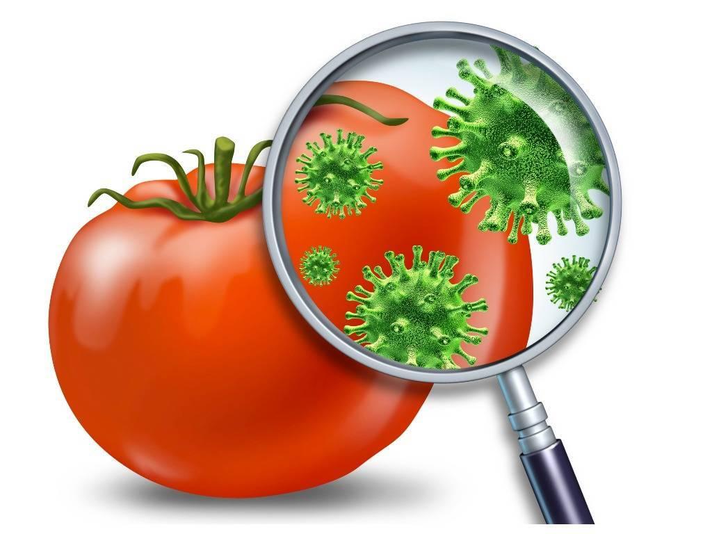 Десять  «золотых» правил для предотвращения пищевых отравлений (инфекций), разработанных воз