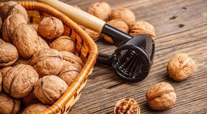 Польза грецкого ореха - обзор полезных свойств, минералов и витамин (95 фото)