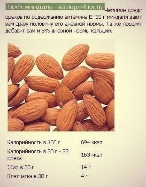 Сколько калорий в орехах: состав бжу, пищевая ценность