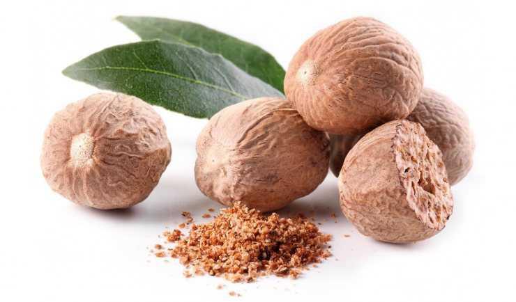Мускатный орех: полезные свойства и противопоказания, как применять