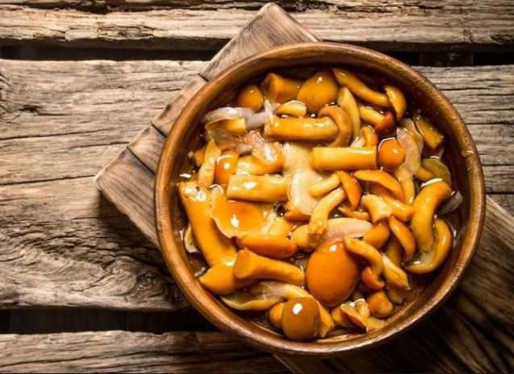 Маринованные грибы ???? - 16 лучших рецептов