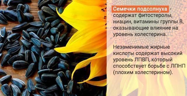 Семечки подсолнуха - польза и вред: жареные, сырые, для мужчин, для женщин, калорийность